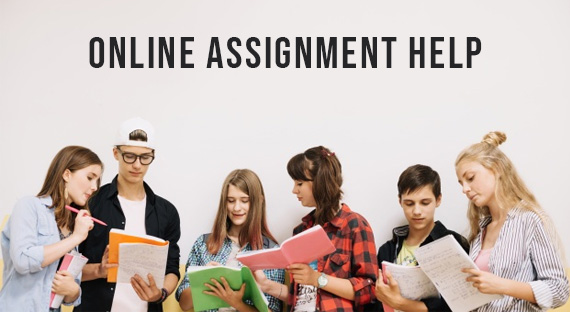 Assignment Help Ireland – Online Assignment Writing Service